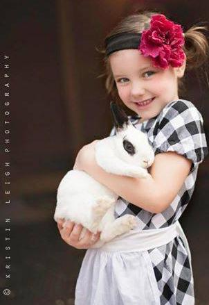 bunny-amelia